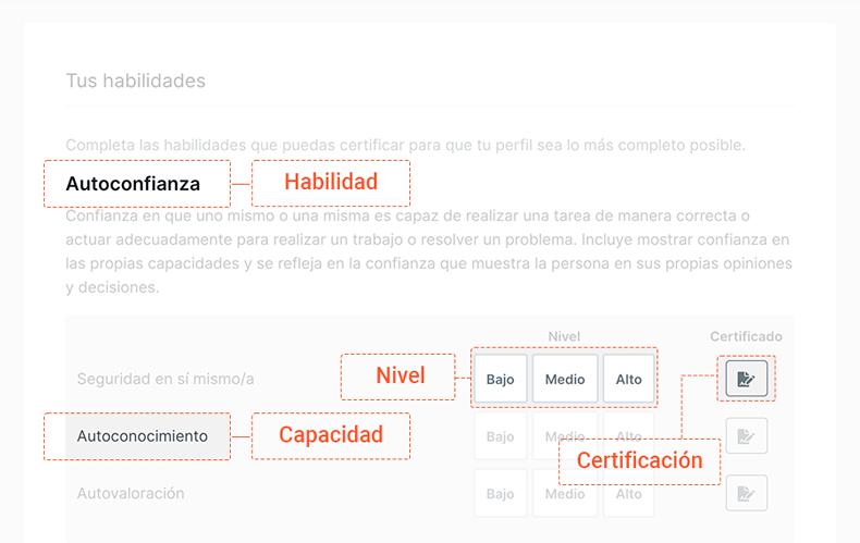 Lanze Cómo crear in CV - Habilidades