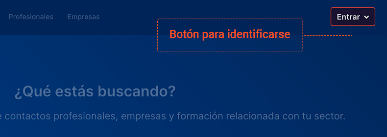 Lanze Registro Login